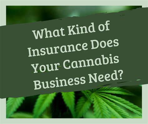 kind  insurance   cannabis business
