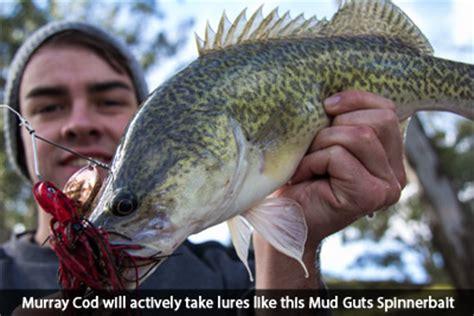 murray  social fishing