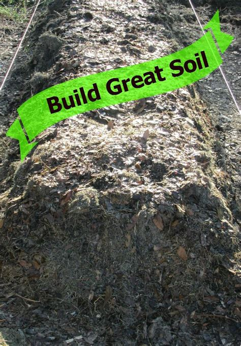 best compost for vegetable garden 501 best images about garden planting ideas on