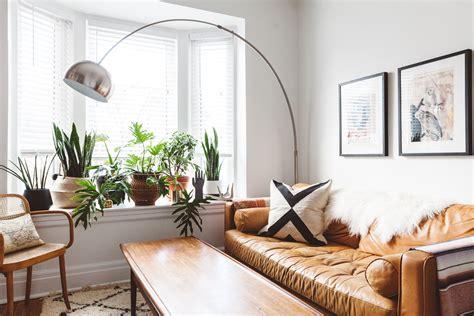 Living Room Plants  Review Home Decor