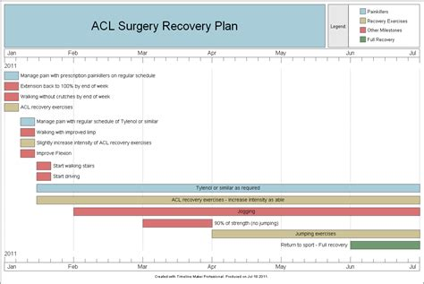 surgery recovery sample timeline created  timeline maker pro