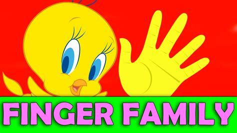 tweety wallpapers images  pictures backgrounds