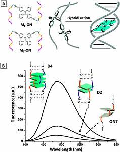 Specific Light-up Bioprobes Based On Aiegen Conjugates