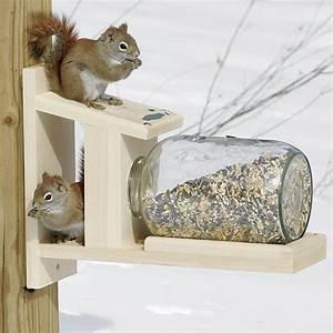 Duncraft com: Duncraft 5729 Squirrel Jar Feeder