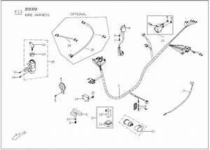 Buddy 125 Wire Harness