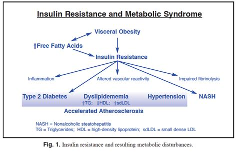 reversing insulin resistance  reduce type  diabetes
