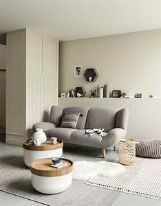 Idees Deco Salon : petit salon d couvrez toutes nos id es pour une d co au ~ Melissatoandfro.com Idées de Décoration