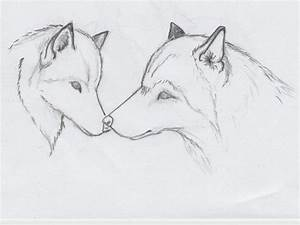 Pencil Drawings Of Animals Step By Step - Drawing Of Sketch