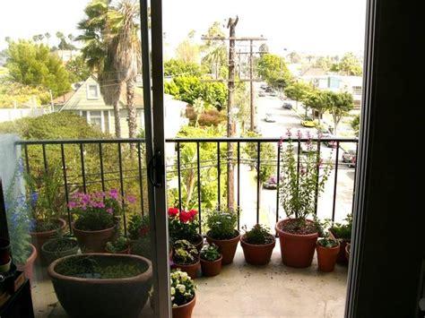 A Beginner's Guide To Patio Gardens