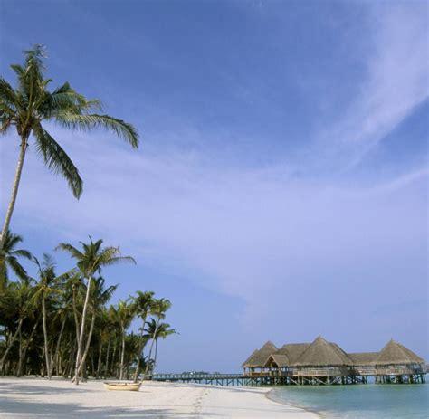 Ist Stets Gern Zu Diensten by Selbstversuch Stets Zu Diensten Das Leben Als Malediven