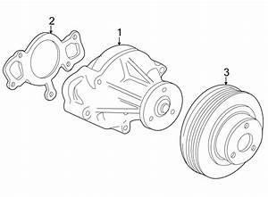 Ford Thunderbird Engine Water Pump Gasket  3 9 Liter  Ls8