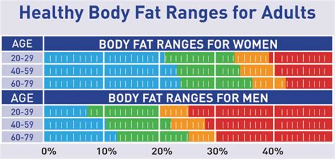 Body Fat Ranges For Standard Adults Hidden Dorm Sex