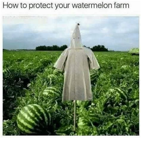 How To Protect Your Watermelon Farm  How To Meme On Sizzle