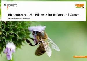 bmel publikationen bestellen bienenfreundliche With französischer balkon mit pflanzen für bienen im garten