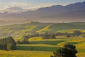 Canterbury Landscape New Zealand | Photo, Information