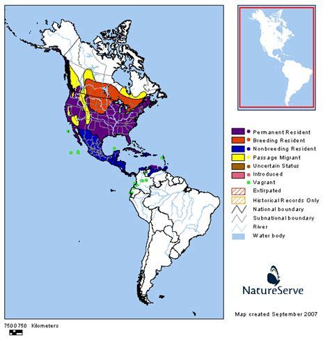 americas range map great blue heron birdphotos