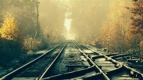 train railway tracks forest wallpapers hd desktop