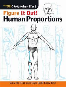 Figure It Out  Human Proportions By Sixth U0026spring Books