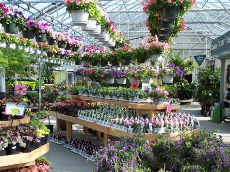 garden nursery me garden nurseries me thenurseries
