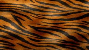 Orange Tiger Texture by watchmebop.deviantart.com on ...