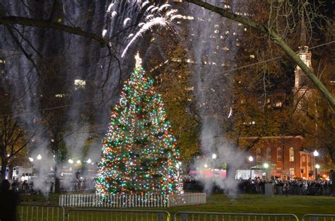 story behind the photo boston christmas tree lighting