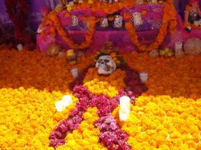 Mexican Day of the Dead Marigolds