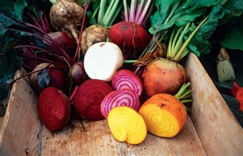 legumes d hiver à cuisiner cuisiner les légumes d 39 hiver arbre de lune