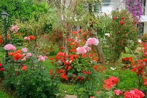Balkonkästen Gestalten Ohne Blumen : vorgarten mit rosen gestalten die sch nsten ideen ~ Bigdaddyawards.com Haus und Dekorationen