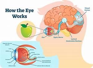Cortical Visual Impairment Lawsuit