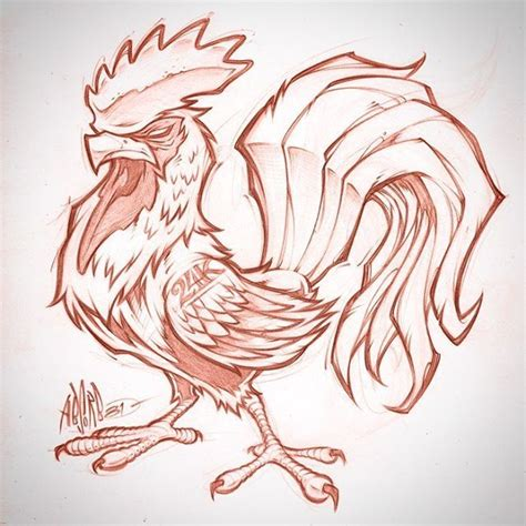 absorb rooster sketch client wip rooster tattoo