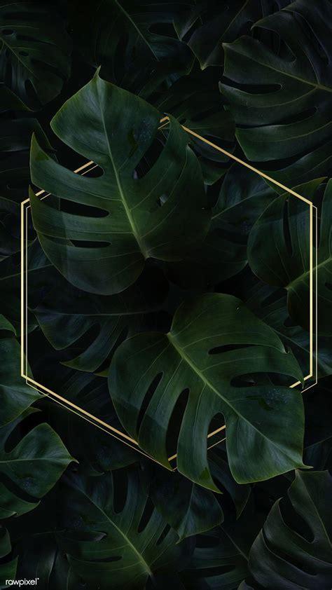 Download premium psd of Hexagon golden frame on a tropical ...