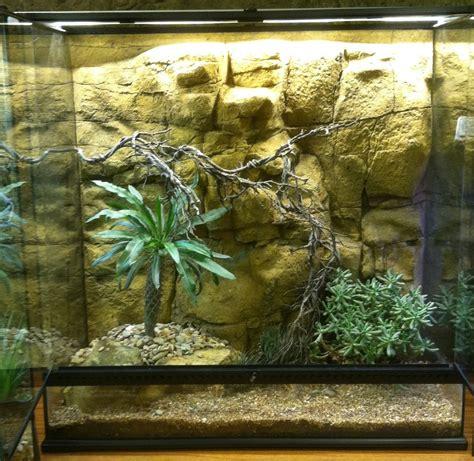 Desert Terrarium Background Aquarium Reptile Pet 3d Backgrounds Universal Rocks