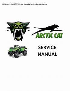 Arctic Cat 250 Wiring Diagram
