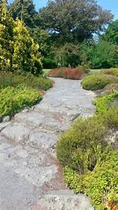 Steingarten Anlegen Tipps : steingarten anlegen ein hauch von alpinem flair ~ Lizthompson.info Haus und Dekorationen