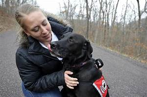 Wounded veterans find comfort in service dogs - News ...