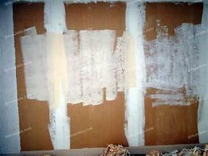 Décoller Papier Peint Sur Placo : le placo se d chire que faire avant peinture conseils ~ Dailycaller-alerts.com Idées de Décoration