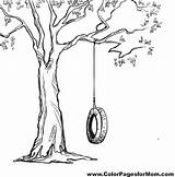 Swing Tree Coloring Pages Drawings Drawing Sketch Adult Tyre Swings Printable Tire Illustration Vector Trees Template Easy Garden Books Inspo sketch template
