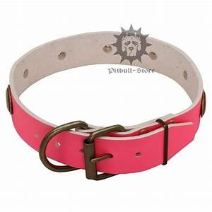 pink dog collar female dog collar uk gbp5530 With girl dog collars