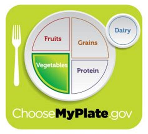 vegetable food group   vegetables