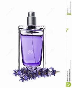 Prix De La Lavande : le parfum de femme en belles bouteille et lavande fleurit ~ Premium-room.com Idées de Décoration