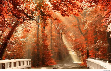 Autumn Season Hd Wallpapers by Hello Autumn September Fall Images Wallpapers Hd