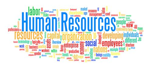 Human Resources  Emcc. National Student Loan Database. Commercial Insurance Online Infor Visual Erp. New York To Florida Movers Airman In The Navy. What Is The Largest Object In Our Solar System. Chocolate Chip Almond Cookies. Virtualized Server Definition. Sprint Investor Relations Php Training Course. At Your Service Plumbing Corona And Margarita