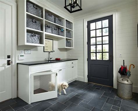 cool laundry room  pet lovers home design  interior