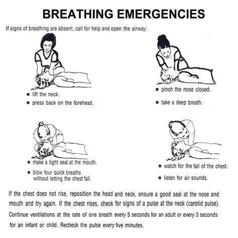 Breathing Emergiencies First Aid Chart Part 1 Health