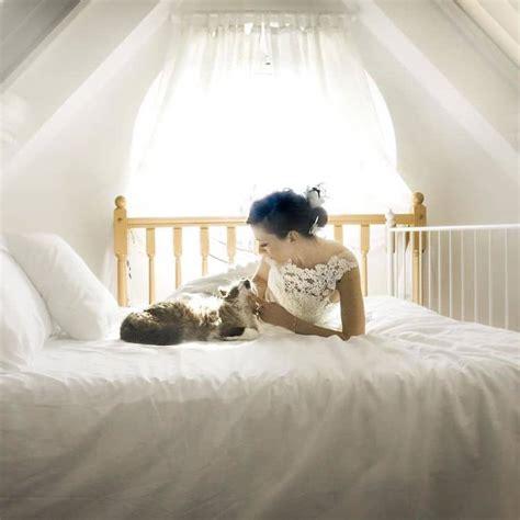 creative wedding photoshoot ideas incorporates cats
