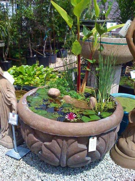 charming diy mini garden pond ideas
