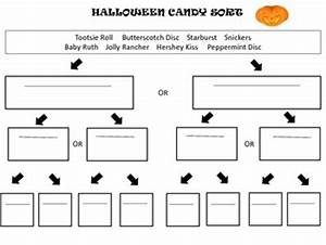 halloween candy sort using a dichotomous key by mrs With dichotomous key template