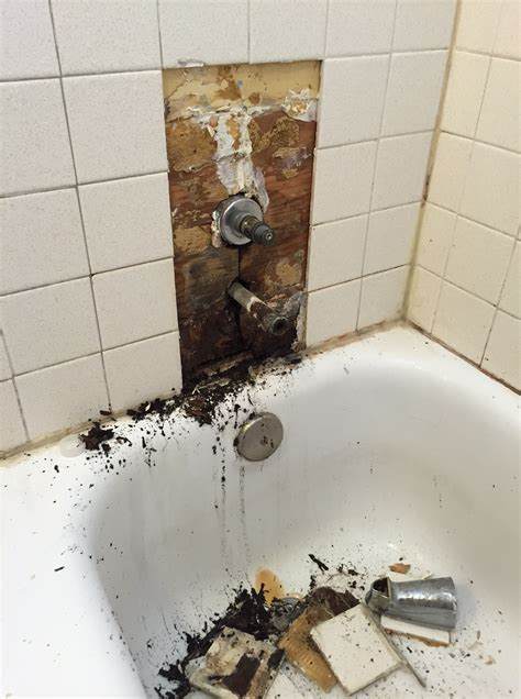 mold on shower walls house interiorhouselife