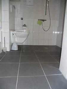 Behindertengerechtes Badezimmer Planen : bad und wc umbau f r menschen mit behinderung ~ Michelbontemps.com Haus und Dekorationen