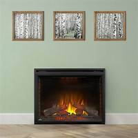 built in electric fireplace Napoleon Ascent 40-In Dual Voltage Built-In Electric ...